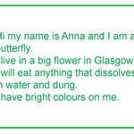 Butterfly-text2