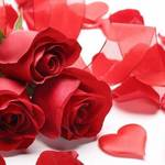 Gift Your Loved One This Rose Day