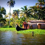 List of 7 Best Luxury Resorts in Kerala