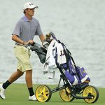 What should be a Normal Golf Push Cart?