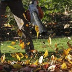 Need To Know What's the Best Leaf Blower on the Market