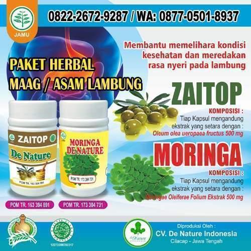 Obat Herbal Untuk Asam Lambung Tinggi