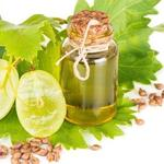The Effect of Grape Seed Extract on Radiation Resistance