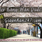 Dịch vụ order hàng Hàn Quốc số 1 tại Việt Nam