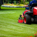 ​Importance of Commercial Lawn Care