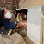 ​Benefits of Hiring Building and Pest Inspection Services