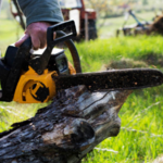 ​Tips That Will Prove Valuable When You Are Selecting the Right Tree Service