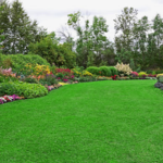 ​Tips To Get the Best Landscaping Companies in Michigan