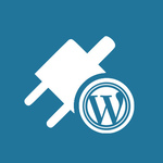 ​Facts About WordPress Support