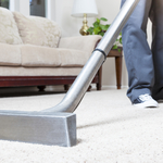 Natural Carpet Care Professional Companies