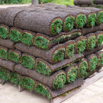​Factors To Consider When Choosing Landscape Supplies