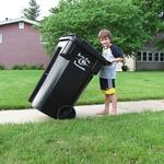 The Efficient Waste Management