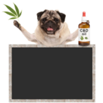 How to Choose the Store to Buy Your CBD Oil