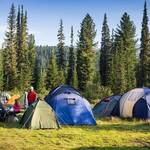 Taking a Look at Your Options for a Great Swag for Any Camping Trip