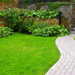 ​Tips For Choosing The Best Landscape Contractor