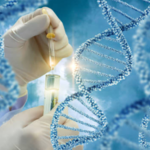 ​Vital Things that You Need to Understand in the Science of DNA