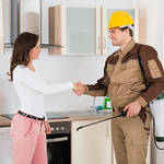 The Many Benefits of Hiring Professional Pest Control Services