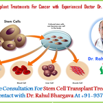 Stem Cell Transplant Treatments For Cancer with Experienced Doctor Dr. Rahul Bhargava