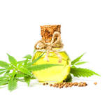 ​What You Need to Know About CBD Oil