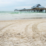 Finding the Best Places to Rent in Clearwater Beach