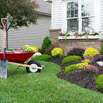 ​Advantages of Hiring Professional Landscapers