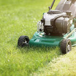 A Guide to Hiring the Best Lawn Care Company