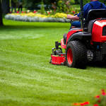 Giving Your Lawn a Makeover