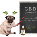 ​Benefits Of Purchasing CBD Products From Online Dispensary
