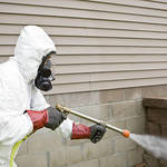 ​Tips to Consider When Hiring a Pest Control Company