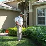​Factors to Consider When Hiring a Pest Control Company