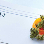 ​Guide to Medical Marijuana Training