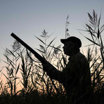 Choosing the Best Hunting Ranch Rental