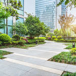Benefits of Having a Las Vegas Commercial Landscaping Company