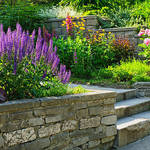 ​A How-to Guide on Choosing a Landscaping Company