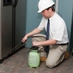 ​Information That Will Be Vital When You Are Deciding the Best Pest Control Firm in Florida