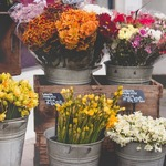 ​The Benefits of Online Florist Flower Delivery