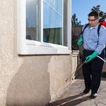 ​Tips On How To Control Pests