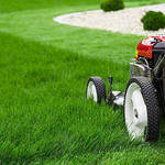Gains of Experts Lawn Servicing