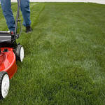 Advantages of Contracting Lawn Mowing services