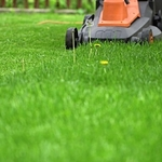 ​How To Find The Right Landscaping Company