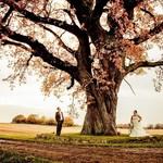Bryllupsbilleder-1-124