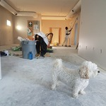 ​Why You Need the Best Professional Renovations