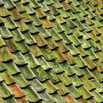 Why You Should Hire a Roofing Contractor