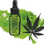​Benefits of A CBD MLM Opportunity