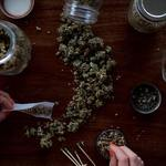 How to Choose the Best Cannabis Dispensary