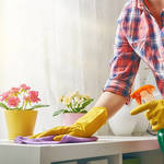 ​Vital Tips For Picking The Ideal House Cleaning Specialist