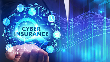 Cyber Insurance Market Comprehensive Insights and Global Outlook 2020 to 2030